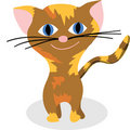 Nice kitty Royalty Free Stock Photo