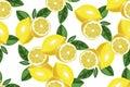 Nice lemon background. Vector hand drawn seamless pattern on white Royalty Free Stock Photo