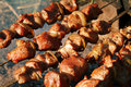 Nice meat. Shashlik - Grill. Royalty Free Stock Photography