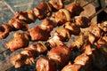 Nice meat. Shashlik - Grill. Royalty Free Stock Photography