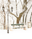 Nice park in winter Royalty Free Stock Images