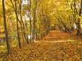 Nice path near river and colorful autumn trees Royalty Free Stock Photo