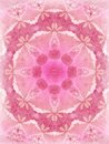 Nice Pink Lace Texture Pattern Royalty Free Stock Images