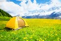 Nice place for tent camping in the yellow dandelion field with mountains on background Stock Image