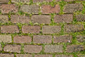 Nice red bricks with grass background Royalty Free Stock Photo
