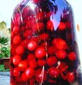 Sour cherries in the brandy Royalty Free Stock Photo