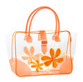 Nice transparency handbag Royalty Free Stock Photo