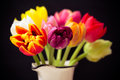 Nice tulips in the vase Royalty Free Stock Image