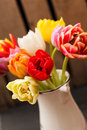 Nice tulips in the vase Stock Images