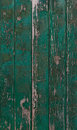 Old green paint texture on a wooden door Royalty Free Stock Photo