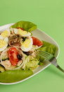 Nicoise Salad Royalty Free Stock Images
