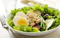 Nicoise salad closeup of a with tuna egg potato olives beans cucumber and tomato Royalty Free Stock Photo