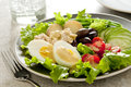 Nicoise salad closeup of a with tuna egg potato olives beans cucumber and tomato Royalty Free Stock Photography