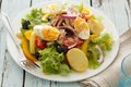 Nicoise salad over wood background blue Stock Image