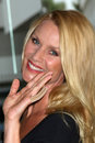 Nicollette Sheridan Stock Images