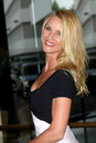 Nicollette Sheridan Royalty Free Stock Photo