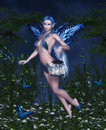 Night fairy beautiful with lantern Royalty Free Stock Photo