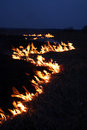 Night fire Stock Image