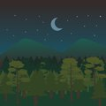 Night Forest Landscape