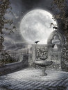 Night garden with vines a fountain ravens and Royalty Free Stock Photos