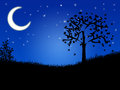 Night landscape with the moon and trees high resolution image Royalty Free Stock Photography