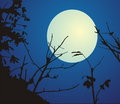 Night landscape wiht moon Royalty Free Stock Photo