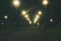 Night park alley illuminated by lampposts Royalty Free Stock Photo
