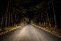 Night road on dark forest Stock Photos