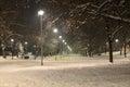 Night Scene of a Park