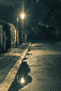Night scene after rain - lantern lights and puddle, old street Royalty Free Stock Photo