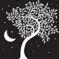 Night Tree Royalty Free Stock Photo