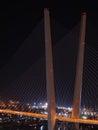 Night view of the bridge in the Russian Vladivostok Royalty Free Stock Photos