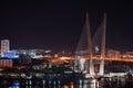 Night view of the bridge in the Russian Vladivostok Stock Photos