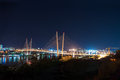 Night view bridge russian vladivostok over golden horn bay Royalty Free Stock Images