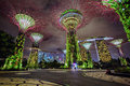 Night view of gardens by the bay singapore december on on december in is a part a plan to transform Stock Photo