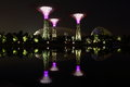 Night scene of super trees and flower dome at lake Royalty Free Stock Photo