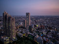 Night view of Tokyo from the Metropolitan Government Building 東京都庁, Shinjuku, Japan Royalty Free Stock Photo