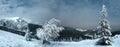 Night Winter Mountain Landscap...