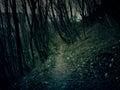 Nightmare landscape scenario dark places Stock Photography