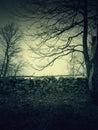Nightmare landscape scenario dark places Royalty Free Stock Photo