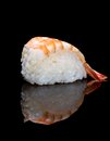 Nigiri sushi japanese cuisine with rice and fresh shrimp Royalty Free Stock Photography