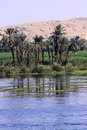 Nile and desert of egypt in africa Stock Photography