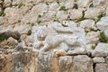 Nimrod fortress lion sculptured in stone the royal embleme of sultan baybars at the on the slope of mount hermon israel Stock Image