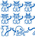 Nine common expressions of a cat Royalty Free Stock Photo