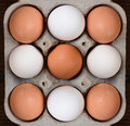 Nine eggs in a cardboard carton high angle view of of brown and white farm fresh the egg crate fills the frame with bit of wood Stock Image