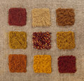 Nine indian spice on hessian backdrop Stock Photography