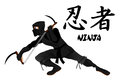Ninja attacking with Kamas Royalty Free Stock Images