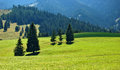 Nizke tatry meadows and forest grown mountains and hills of mountains slovakia Stock Image