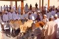 NIZWA, OMAN - FEBRUARY 3, 2012: Omani men traditionally dressed attending the Goat Market in Nizwa