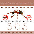 No ants in the house Royalty Free Stock Photo